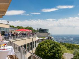 © Modul University Vienna